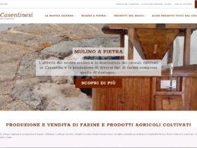 portfolio terrecasentinesi ecommerce 280x210 - Terre Casentinesi